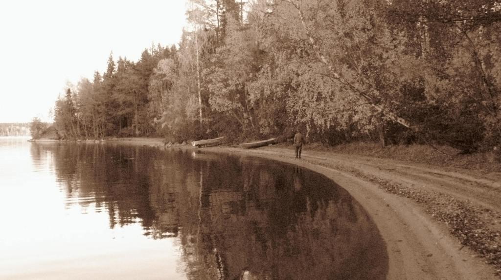 Kyrösjärven ranta. Lake Kyrösjärvi