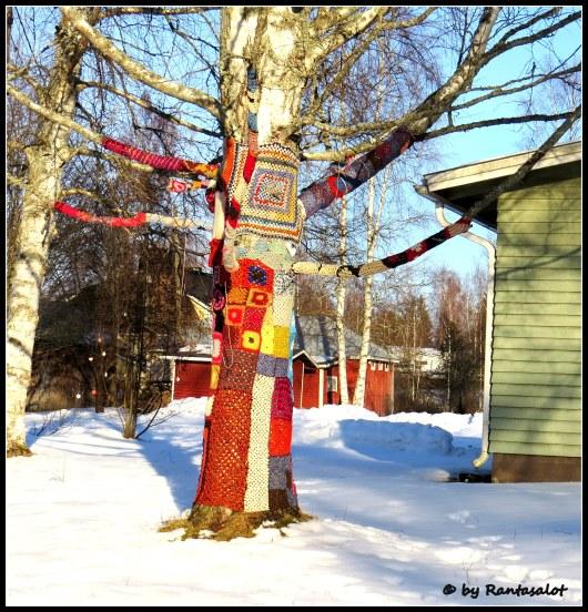 Virkattu puu1