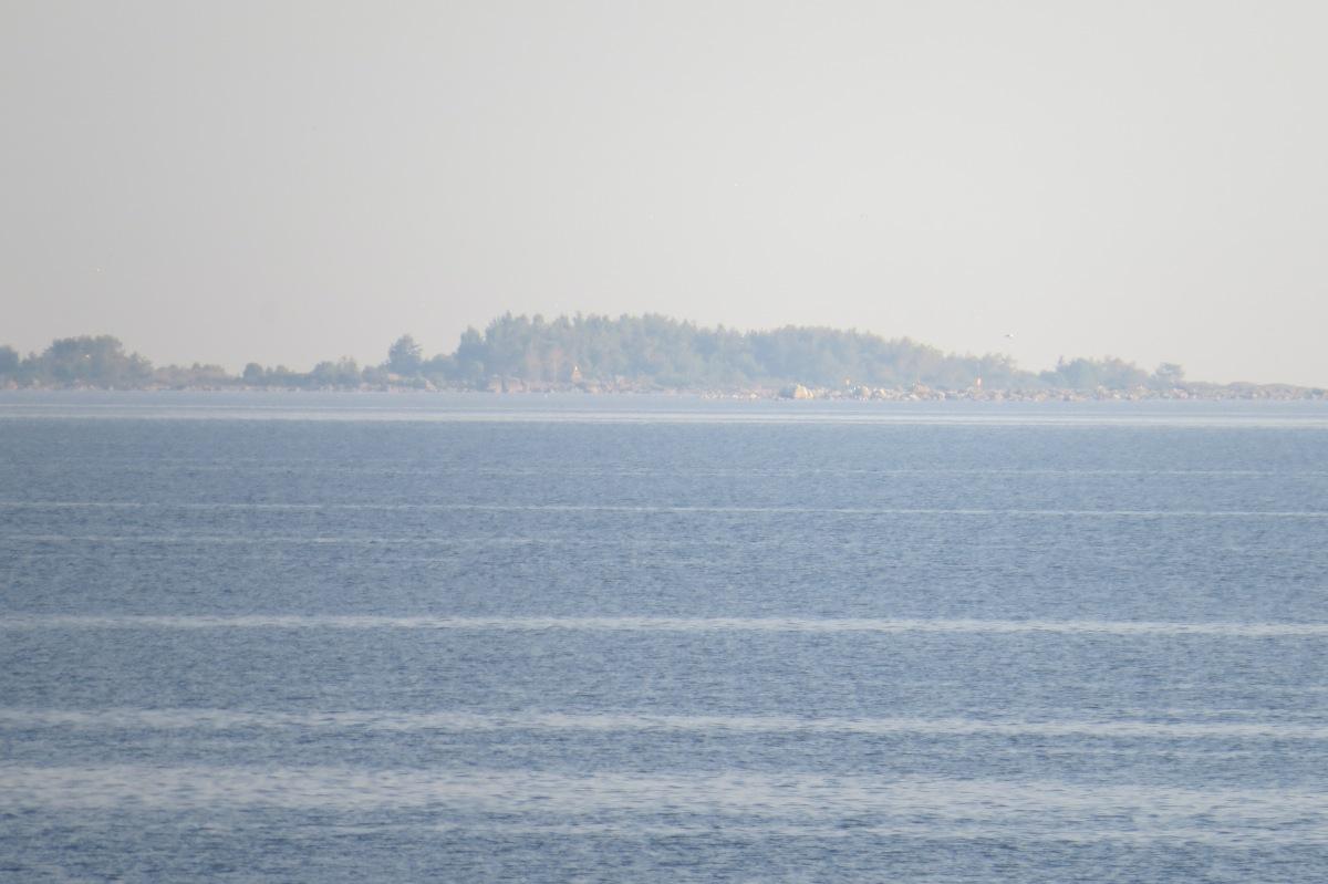 Saari1.jpg