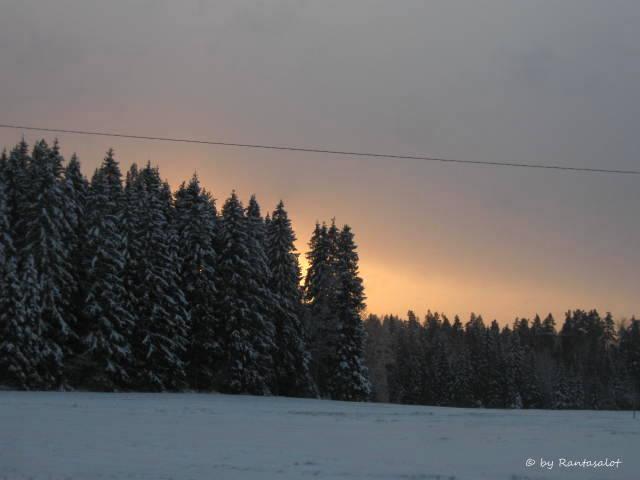 talvipaiva