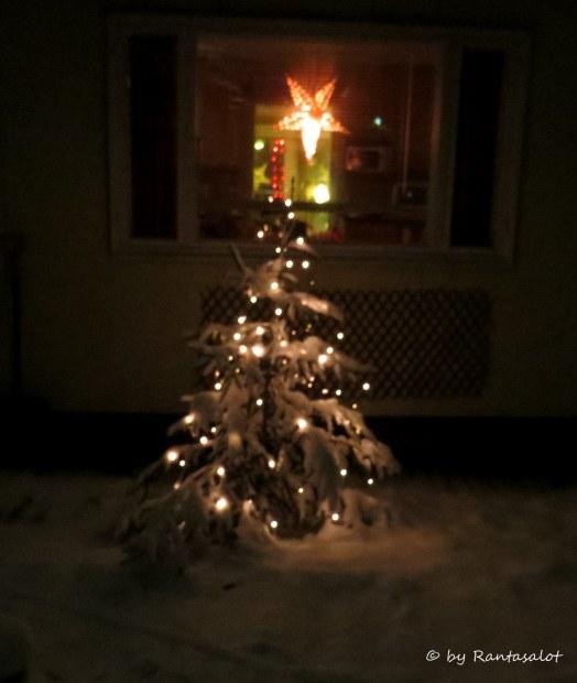 kosmon-joulukuusi