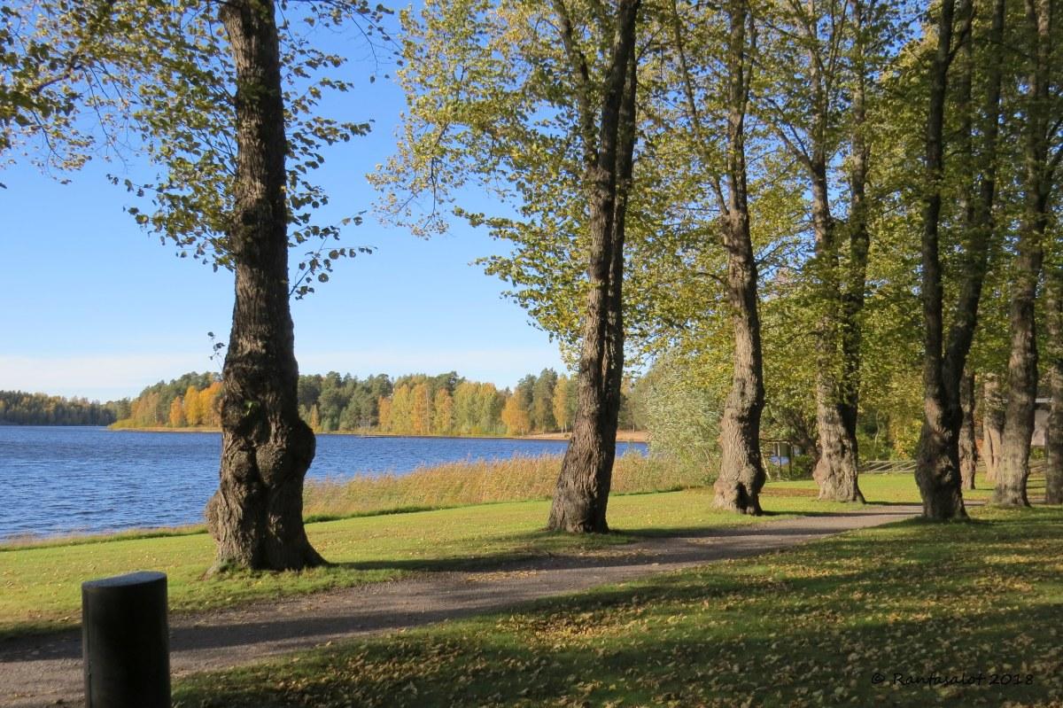 IMG_9635 Lehmukset järvi