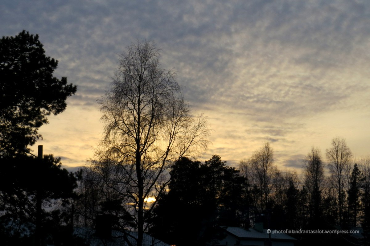 IMG_0096 Talvipäivä