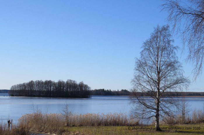 IMG_0172 Lavia Karhijärvi saari ja koivu